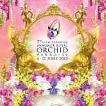 Bangkok-Royal-Orchid-Paradise-2013