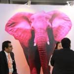 elephant viv expo